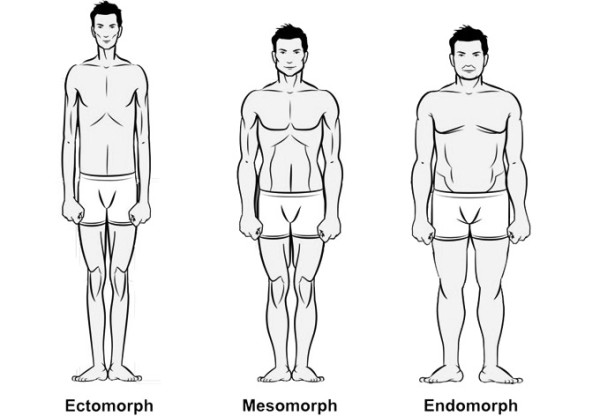 The 3 Body Types Explained: Ectomorph, Mesomorph, and Endomorph