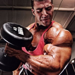 Breaking the Plateau: Training for the Advanced Body Builders