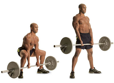 http://www.directlyfitness.com/wordpress/wp-content/uploads/2011/07/Deadlift-traditional.jpg