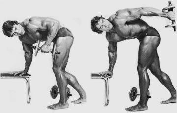 Image result for triceps kickbacks